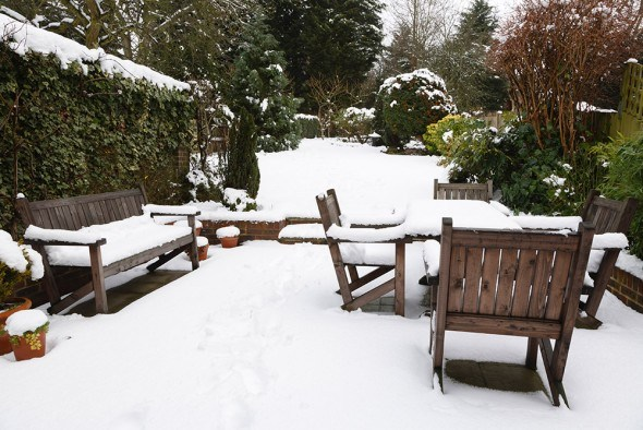 Усадьба сад зима снег