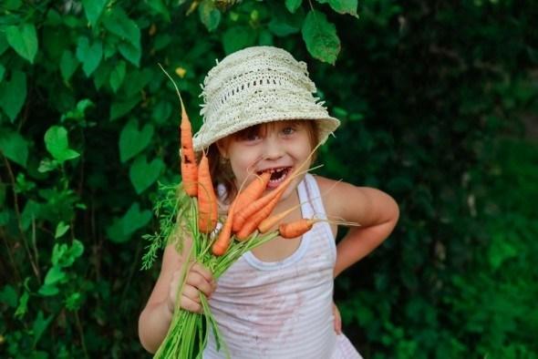 Овощи с интересной формой, непривычной окраской и экзотическим видом