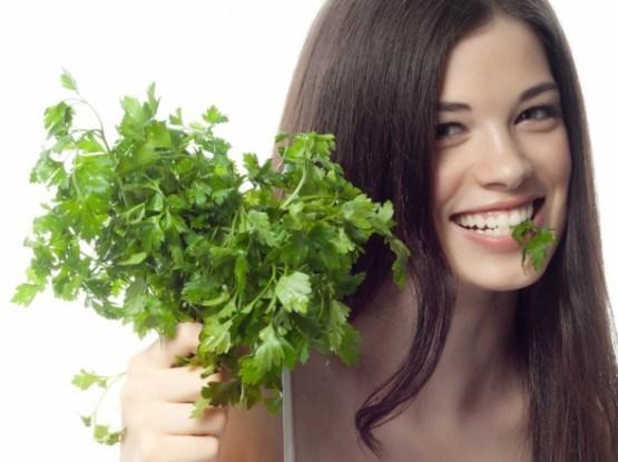 Растения котрые обладают антибиотическими, противомикробными, противовирусными антимикотическими свойствами]