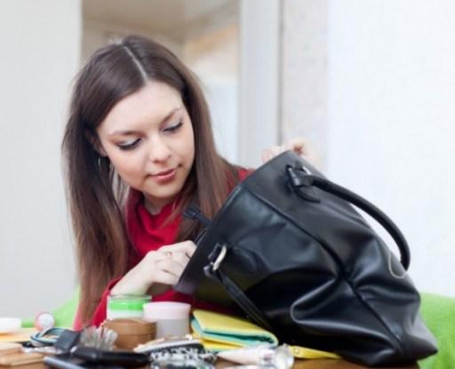 Что живет в женской сумке