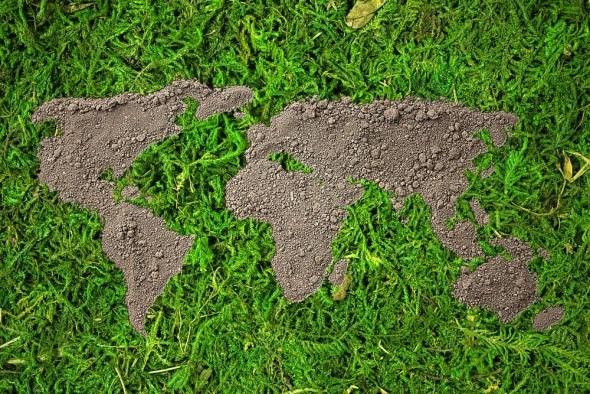 Отмечаем Всемирный день почв