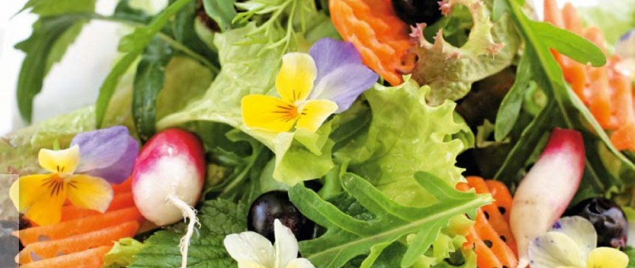 Салат с молодыми листьями смородины